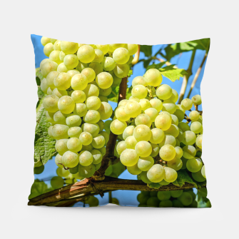 Miniaturka Delicious growing green grapes bunch farming on a beautiful blue summer sky background Pillow, Live Heroes
