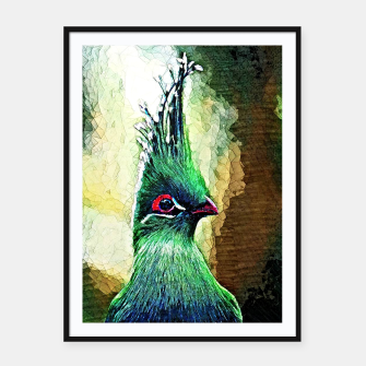 Thumbnail image of Green Turaco Bird, Live Heroes