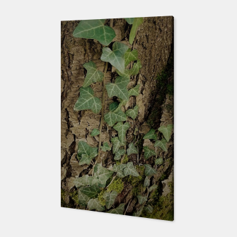 Thumbnail image of ivy Canvas, Live Heroes