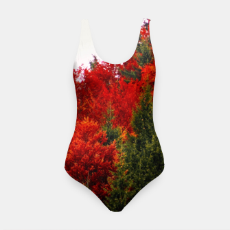 Thumbnail image of Autumn shades Swimsuit, Live Heroes