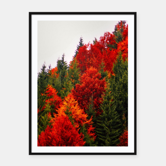 Thumbnail image of Autumn shades Framed poster, Live Heroes