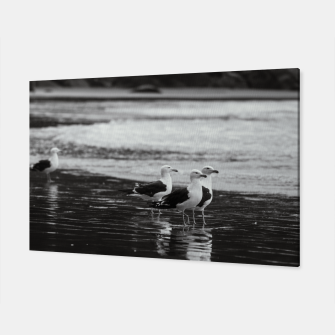 Miniatur Seagulls by the sea Canvas, Live Heroes