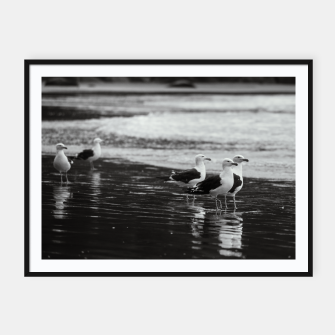 Miniatur Seagulls by the sea Framed poster, Live Heroes