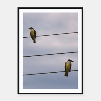 Miniatur Birds on wires Framed poster, Live Heroes