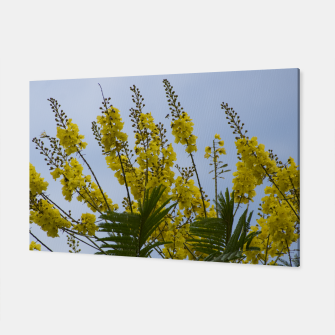 Thumbnail image of Yellow flowers Canvas, Live Heroes