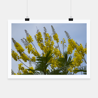 Thumbnail image of Yellow flowers Poster, Live Heroes