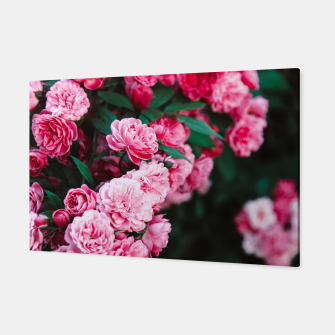Miniatur Flowers grow out of dark moments Canvas, Live Heroes
