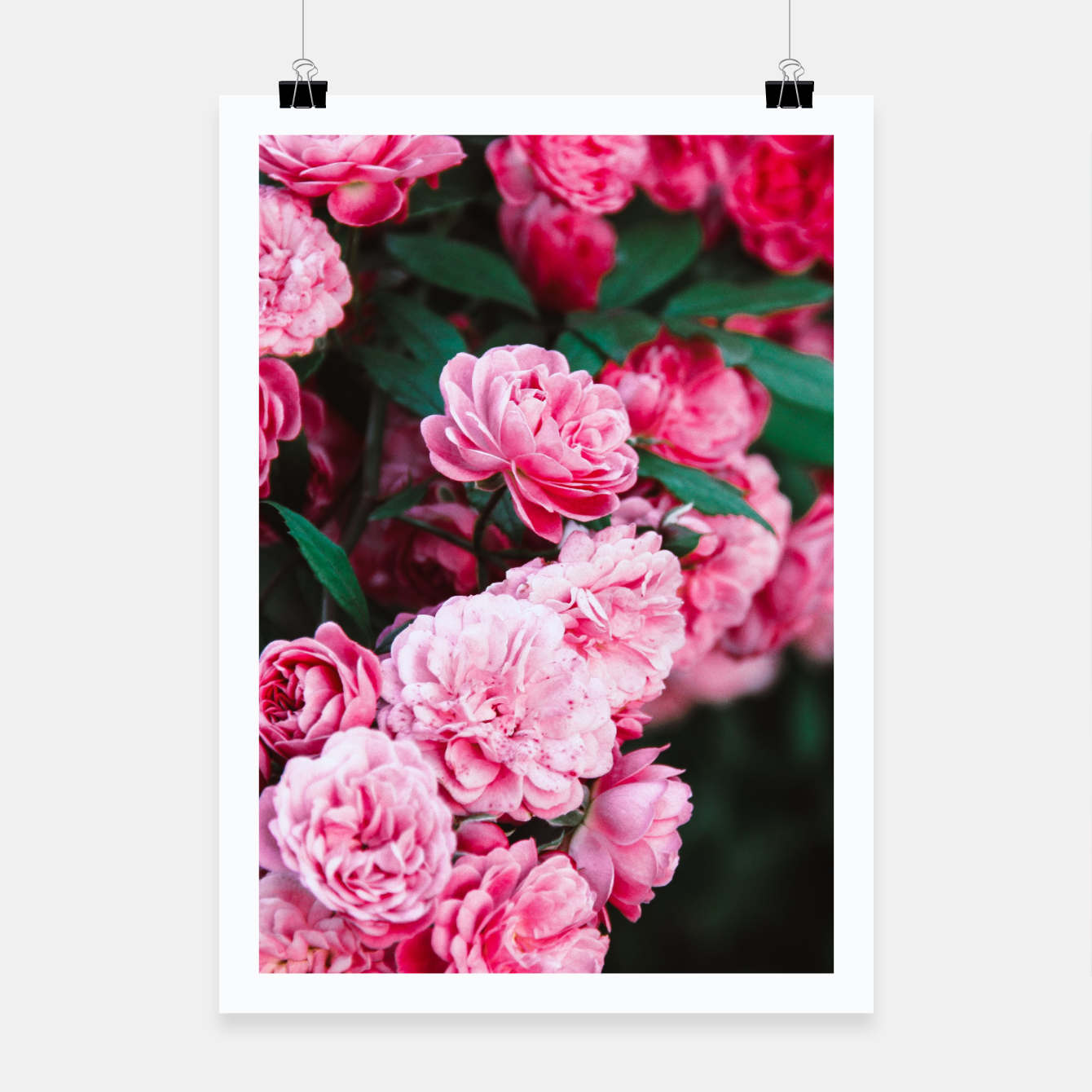 Foto Flowers grow out of dark moments Poster - Live Heroes