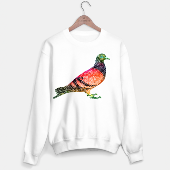 brd Sweater regular thumbnail image