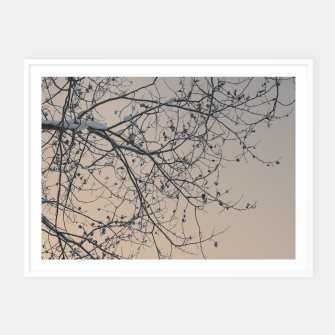 Miniaturka Snowy branches Framed poster, Live Heroes