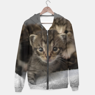 Miniatur Photo of a group of cuddly kittens Hoodie, Live Heroes