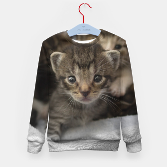 Miniatur Photo of a group of cuddly kittens Kid's Sweater, Live Heroes