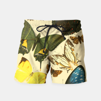 Thumbnail image of Royal Natural History 1893-1896 - Butterflies Swim Shorts, Live Heroes