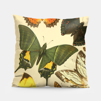 Thumbnail image of Royal Natural History 1893-1896 - Butterflies Pillow, Live Heroes