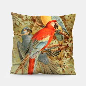 Thumbnail image of  Royal Natural History 1893-1896 - JCK (Macaws) Pillow, Live Heroes