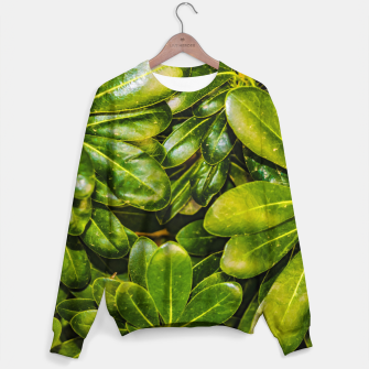 Thumbnail image of Top View Leaves Photo Cotton sweater, Live Heroes