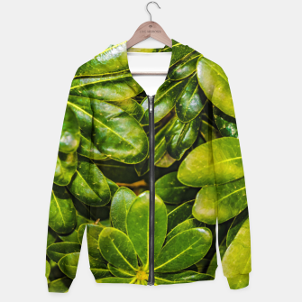 Thumbnail image of Top View Leaves Photo Cotton zip up hoodie, Live Heroes