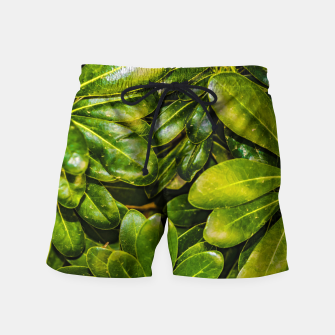 Thumbnail image of Top View Leaves Photo Swim Shorts, Live Heroes
