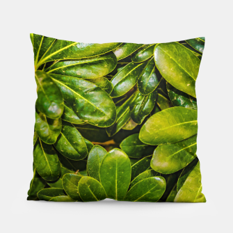Thumbnail image of Top View Leaves Photo Pillow, Live Heroes