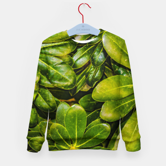 Thumbnail image of Top View Leaves Photo Kid's sweater, Live Heroes