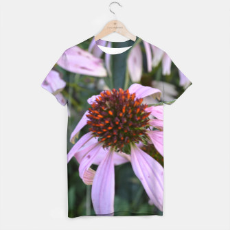 Thumbnail image of Coneflower Abstract, Live Heroes