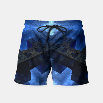 Thumbnail image of Dimensional Channel Swim Shorts, Live Heroes