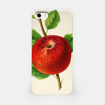 Thumbnail image of  Canadian Horticulturalist 1888-96 - Hubbardston Nonsuch Apple iPhone Case, Live Heroes