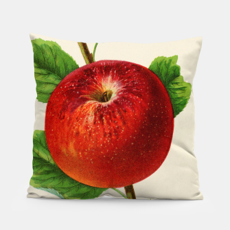 Thumbnail image of  Canadian Horticulturalist 1888-96 - Hubbardston Nonsuch Apple Pillow, Live Heroes