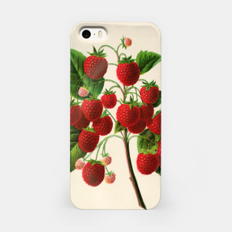 Thumbnail image of  Canadian Horticulturalist 1888-96 - Raspberries iPhone Case, Live Heroes