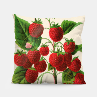 Thumbnail image of  Canadian Horticulturalist 1888-96 - Raspberries Pillow, Live Heroes