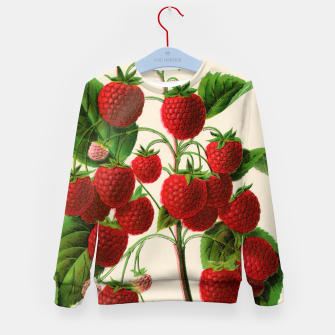 Thumbnail image of  Canadian Horticulturalist 1888-96 - Raspberries Kid's sweater, Live Heroes