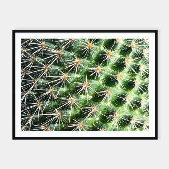 Miniatur closeup green cactus texture with morning sunlight Framed poster, Live Heroes