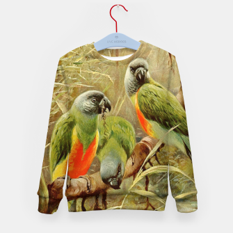 Miniaturka  Kuhnert Wilhelm-Wild Life of the World 1916 v.3 (Senegal Parrot) Kid's sweater, Live Heroes