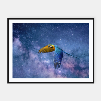 Thumbnail image of Parrot Framed poster, Live Heroes