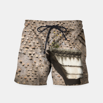 Miniaturka Wall in Rome Swim Shorts, Live Heroes