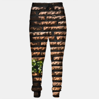 Thumbnail image of Tiles and plants Cotton sweatpants, Live Heroes