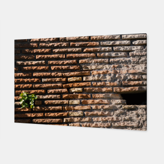 Thumbnail image of Tiles and plants Canvas, Live Heroes