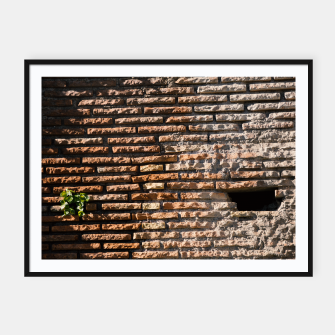 Thumbnail image of Tiles and plants Framed poster, Live Heroes