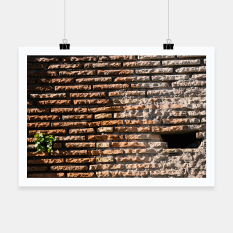 Thumbnail image of Tiles and plants Poster, Live Heroes