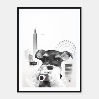 Schnauzer with Camera  Framed poster thumbnail image