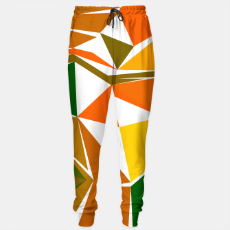 Thumbnail image of Sweatpants men with Design Blocks eco, Live Heroes