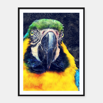 Thumbnail image of parrot Plakaty w ramie , Live Heroes