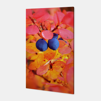 Thumbnail image of Autumn Bilberry Canvas, Live Heroes