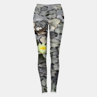 Thumbnail image of Water lilly Leggings, Live Heroes