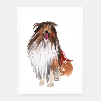 Imagen en miniatura de watercolor dog vol1 collie  Plakaty w ramie , Live Heroes