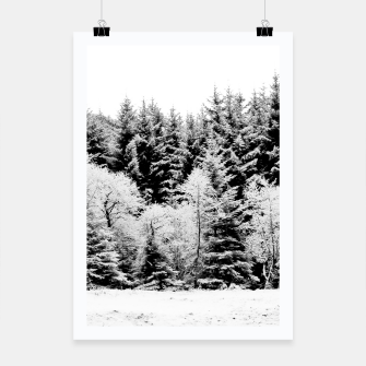 Thumbnail image of Blank and white pine trees Poster, Live Heroes