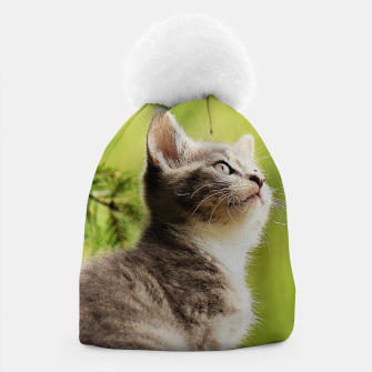 Miniature de image de small kitty Czapka, Live Heroes