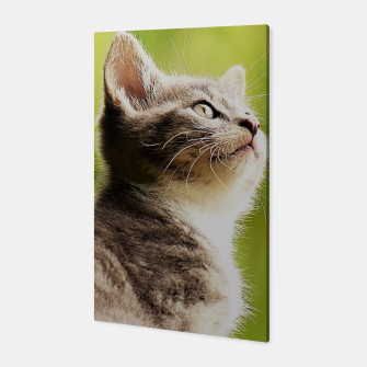 Miniature de image de small kitty Canvas, Live Heroes