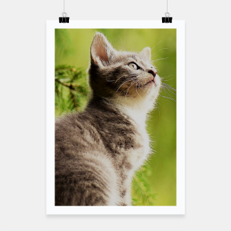 Miniature de image de small kitty Plakat, Live Heroes