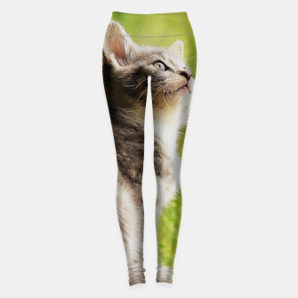 Miniature de image de small kitty Legginsy, Live Heroes